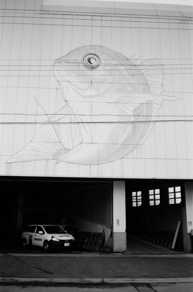 bigfish_000532000012