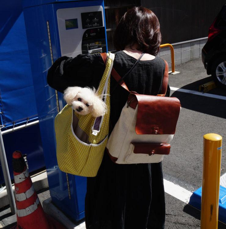 doggybag_dsc05722