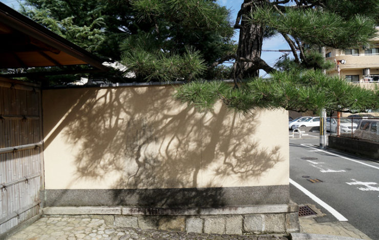ky_shadows_dsc05866