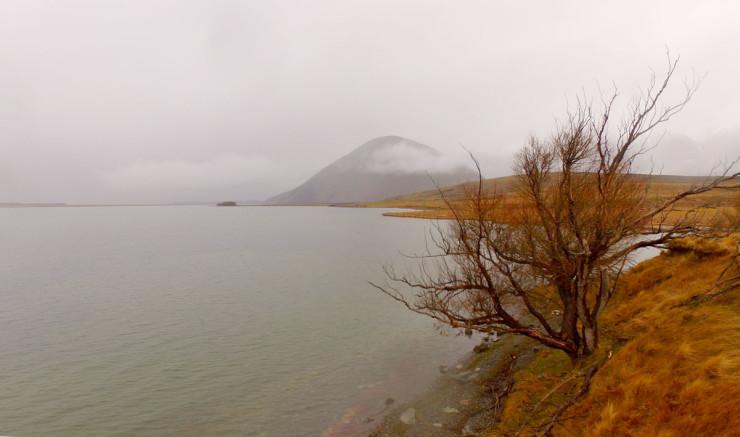 LakeHeron