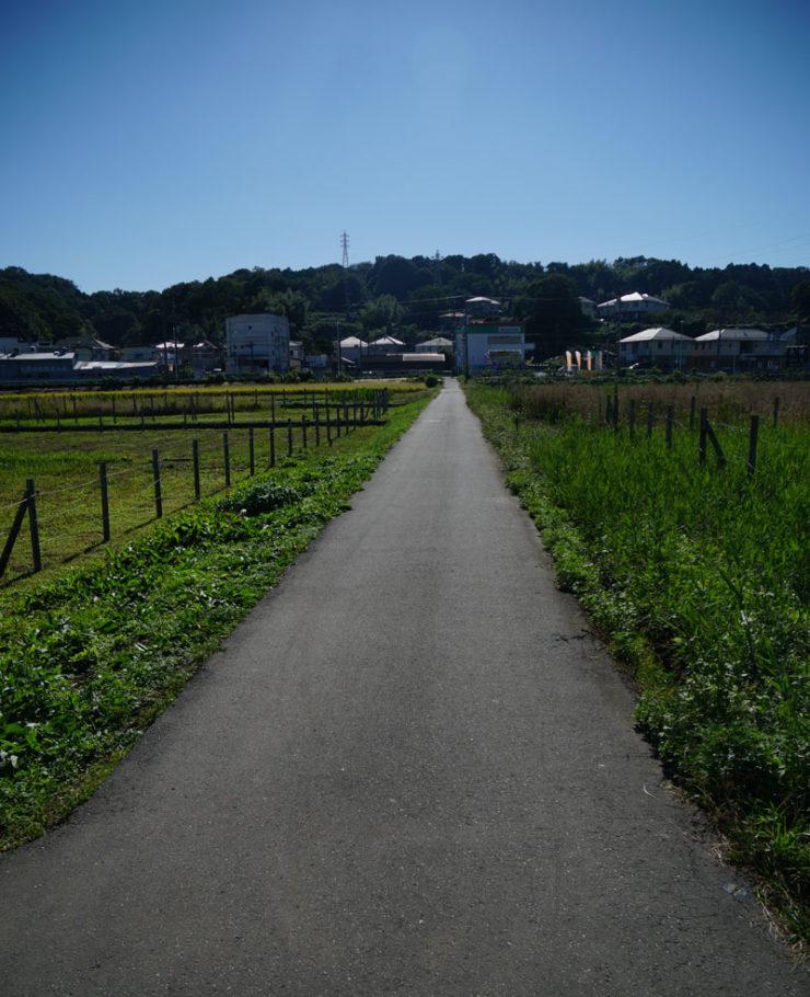 path_dsc06256