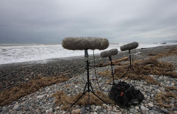 Field recording